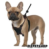 Sporn Mesh Stop-Pulling Harness